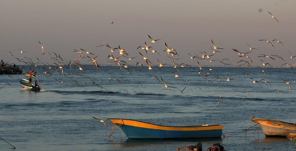 Fishing boats lie in the water off the coast of Gaza AFP Photo / Mahmud Hams